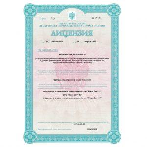 Лицензия11